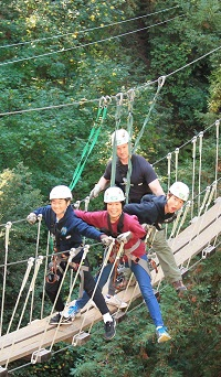 four people walking across a rope bridge wearing harnesses